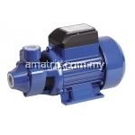 QB-60 0.5HP Electric Clean Water Pump