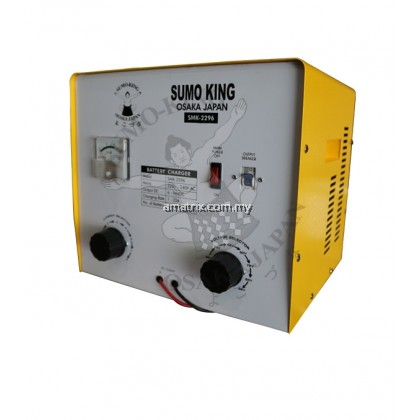 6V-96V PROFESSIONAL BATTERY CHARGER Charging Rate (A)20A
